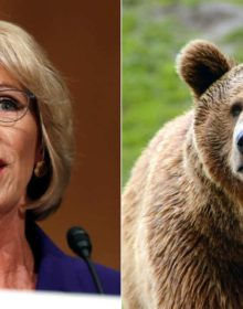 Guns for Grizzlies: 10 Public School Movie Educators Surely Affected by Education Secretary Betsy DeVos and the Trump Administration