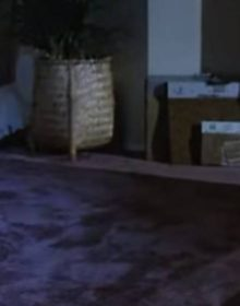 THE REAL POLTERGEIST CURSE: How the Freelings Are the Worst Movie Parents Ever
