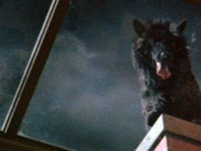 HORROR BUSINESS Episode 62: Asylum & The Beast Must Die
