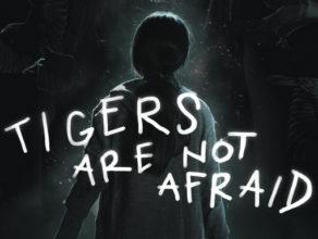 Guerillas, Violencia y Fantasmas Que Vuelven: TIGERS ARE NOT AFRAID Review