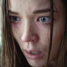 An Interview with David Marmor (1BR Director): BROOKLYN HORROR FILM FEST